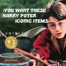 Harry Potter must have items